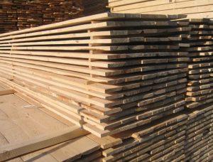 Строение древесины и ее свойства